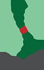 LymFys Logo